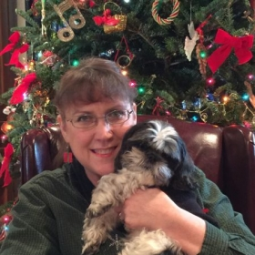 Melody and Heidi celebrating Christmas 2016.  Melody is a 12-year-old B&W Shih Tzu.