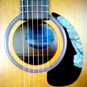 Seagull Entourage Mini Jumbo R Acoustic Guitar. I'm adding the  Fishman PreSys to this beauty.