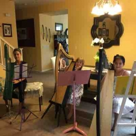 First Harp Ensemble practice of 2016