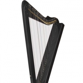 the harp on which I play and teach