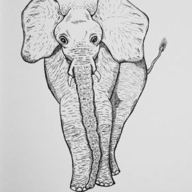 Elephant (ink pen on paper) September 2016