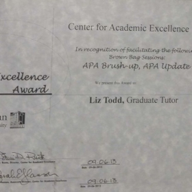 APA Excellence Award from the Center for Academic Excellence at Metropolitan State University