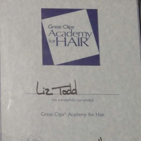 Great Clips Training Degree