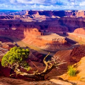 Drama in Landscape (Canyonlands from Dead Horse Point, Utah)