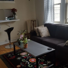 In-Studio lessons take place in my humble apartment living room!