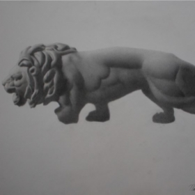 Lion cast drawing