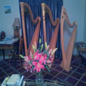 My home studio, with an Irish/ Celtic harp and my two big harps.