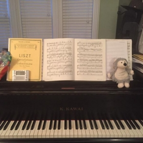 Just a funny insider's view into what the piano looks like when I practice :)