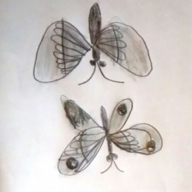 Student: Americ P. (Age 11) Study of two butterflies