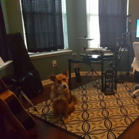 Left side of home studio (of course, pet friendly students get the choice of meeting the very people friendly pup!)