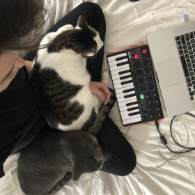 How Cats take your sound to the next level
