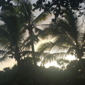 This is a picture of the sunrise just outside my house in Hawaii.
