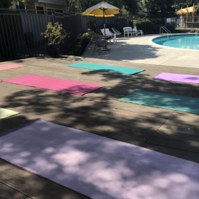 One-on-one/group Yoga in-home, by a pool or in a park! You choose!