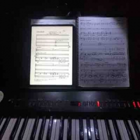 Sometimes you have to get a little creative when playing from two different versions of the same score!