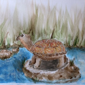 Watercolor painting of a turtle