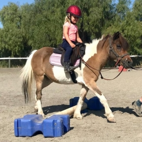 McKenna and Rosie, one of our lesson ponies