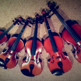 Violins of all sizes available for loan