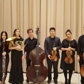 My Beethoven Septet ensemble