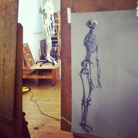 Skeleton drawing I drew with charcoal pencil in my Life Drawing class