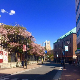 Waseda University located in Tokyo (where I attended school for 1 year).