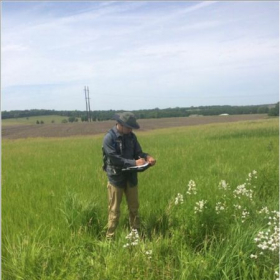 Gathering pollinator and plant data in Lawrence Kansas