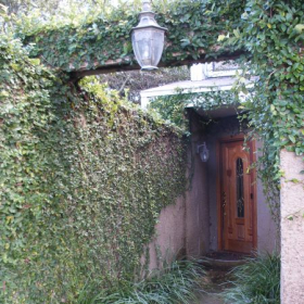 """Entrance to my studio near beach in St. Augustine, FL, """"The Vine-Covered Oasis.""""  A vacation rental for students and others."""