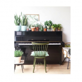 come to my plant-filled studio for a wonderful voice lesson!