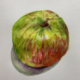 Watercolor, painted from a still life: I painted this apple with an online student to show how to control the water, paint, and color.
