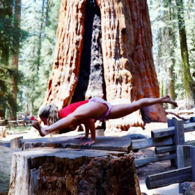 Koundinyasana in Sequoia National Park next to the biggest tree in the world!