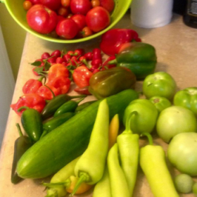 One of several yields from summer vegetable garden