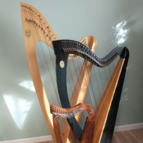 Harps available for rent to students in the NE Pennsylvania/New York/New Jersey area.