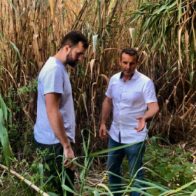 Myself and Daniel Rigotti, the owner of Rigotti Cane, in one of his cane fields near Cogolin, France.