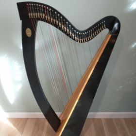 Lyon and Healy Folk harp, 34 strings, fully levered. Rent for $60/month if taking lessons with me. Contact for details and availability.