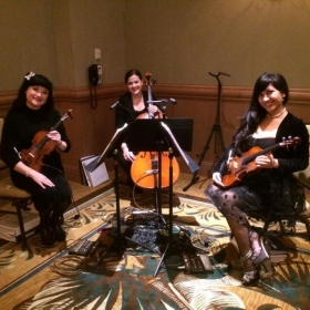 Performing for a private event