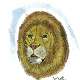 """""""Lion head"""" pencil and watercolor"""