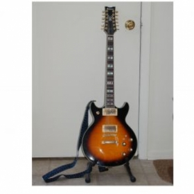 Ibanez 12 string solid
