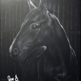 White Charcoal Portrait Drawing of Horse on Black foam board.