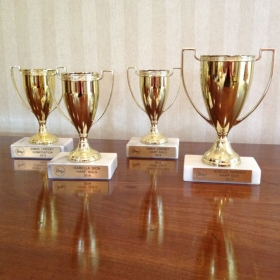 Gold cups waiting to be awarded to my students!