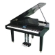 Thumb_103421_pi_DigitalGrandPiano