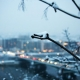 Thumb_106445_pi_winter_branch_snow_city_macro_ultra_3840x2160_hd-wallpaper-12870