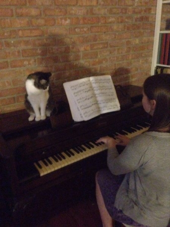 Practicing with some help from my furry friend