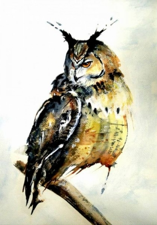 Owl, watercolor