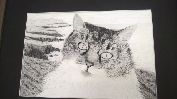 """""""Miss Kitty on the coast of Ireland"""" Charcoal & Graphite"""