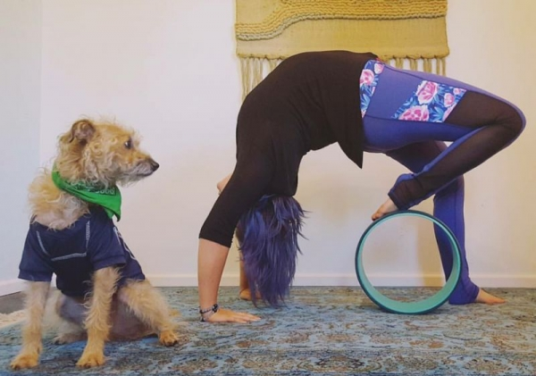 A yoga wheel is a great tool for your practice!