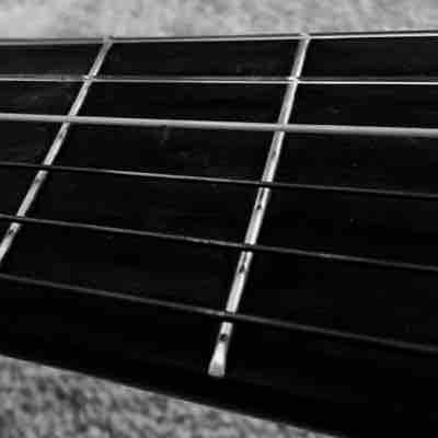The beauty of the fretboard.
