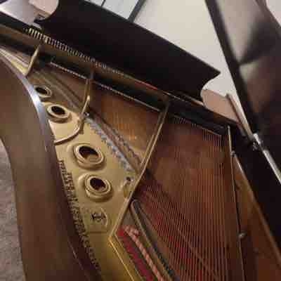 Inside the Steinway