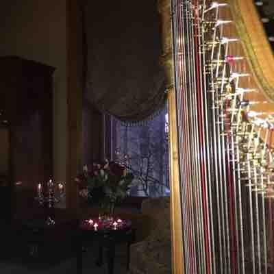 Playing pedal harp at the Whitney near Wayne State University