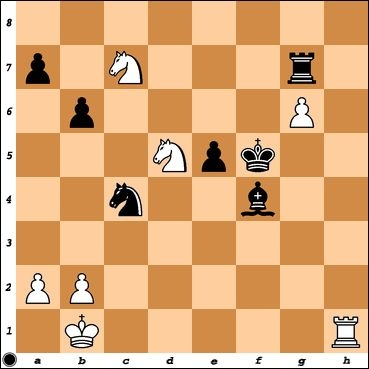 My best tournament game. IM Martin Neubauer has played g6, threatening Ne8. What is Black's best move?