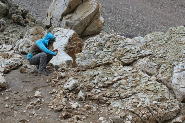 Studying a geological outcropping in the Andes (South America).