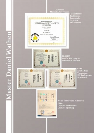 Current 2017 certifications in empty-hand martial arts including examinations in ITF/WTF Taekwondo, Tangsoodo, Hapkido and self-defense.